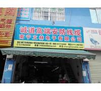 南宁立林电子有限公司