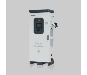 RDE110系列落地式直流充电桩-南宁市腾林机电设备有限公司中国人民电器集团经销部