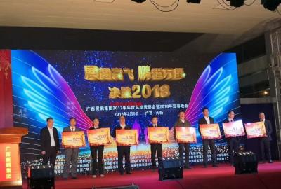 """""""广西展鹏集团2017年年度总结表彰会"""