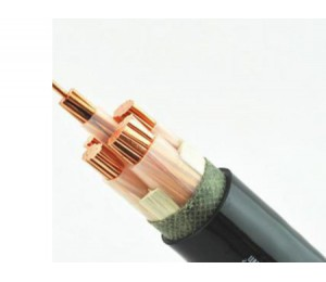 低压交联电缆YJV-金祥