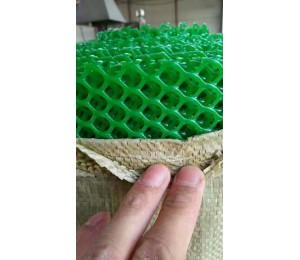 塑料平网-宝成筛网